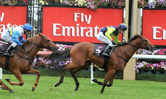Absolute Faith Flemington 18 April 2009 1400m