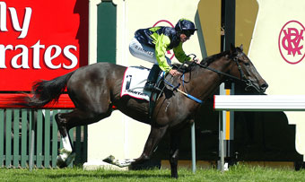 Hollow Bullet 2004 Wakeful Stakes