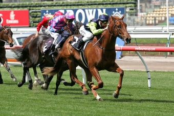 Sweet Cheeks 2009 Maribyrnong Trial Stakes Winner