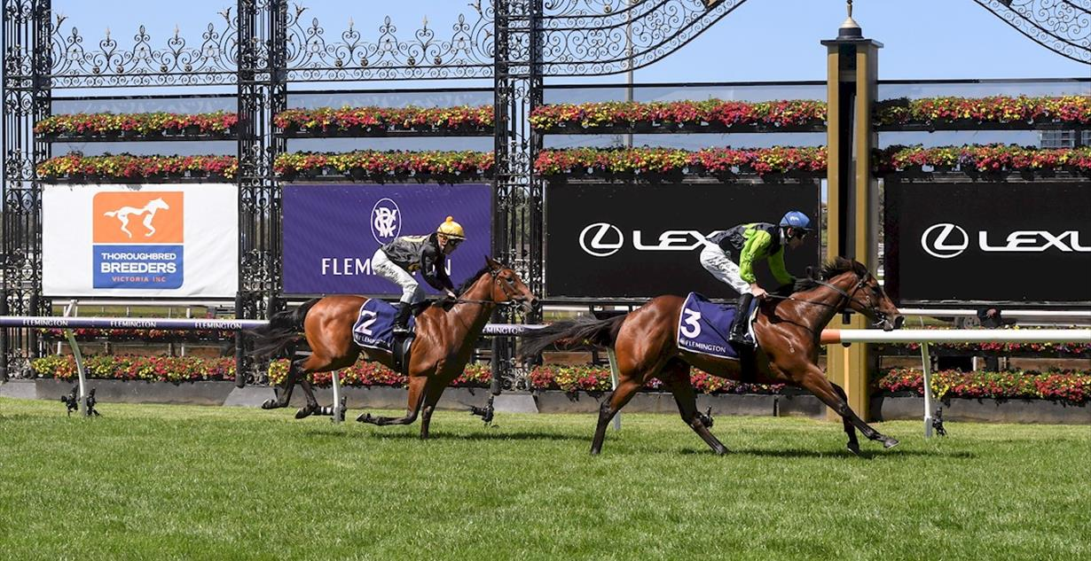 La Rocque - Flemington 6th March 2021